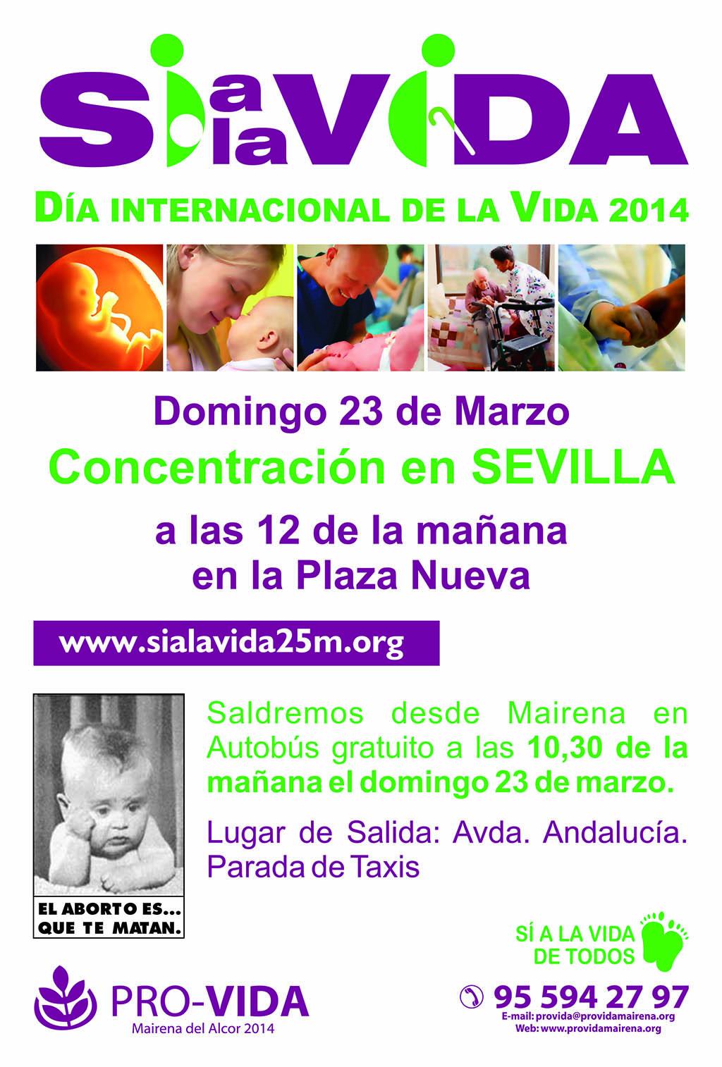 concentracionvida 2014