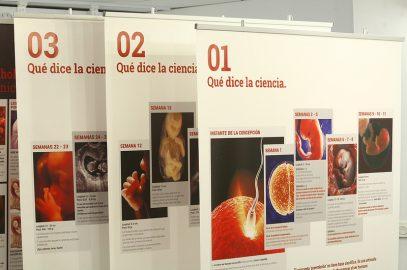 Expovida en Mairena del Alcor hasta el 30 de Junio